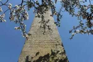 Thames & Medway obelisk